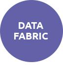 NetApp Data Fabric